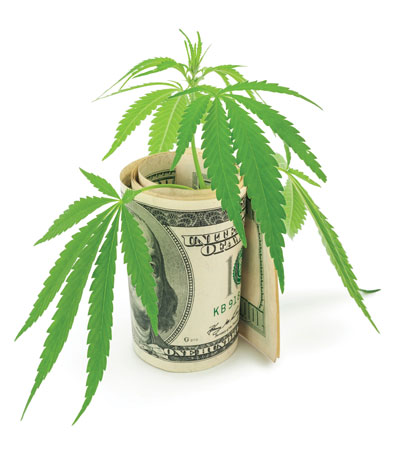 Cannabis Is a Complicated Business
